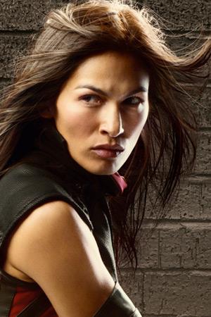 Elodie Yung as Elektra Natchios
