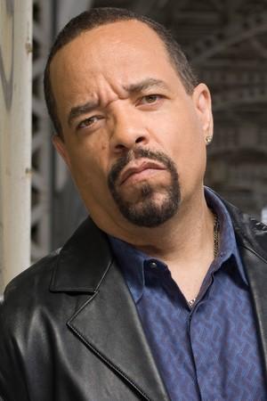 Ice-T as Fin Tutuola