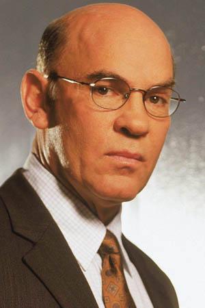 Mitch Pileggi as Walter Skinner